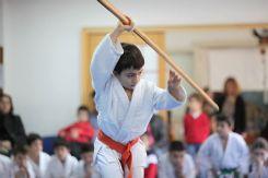 II.Uluyama İaido & Jodo Kata Yarışma ve Gösterisi